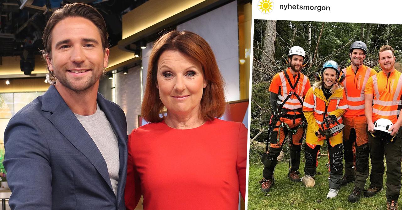 Missen i Nyhetsmorgon på TV4