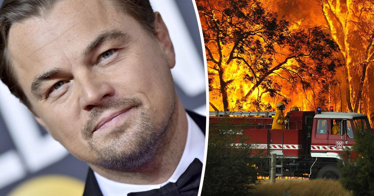 Leonardo DiCaprio skänker miljoner – vill hjälpa Australien