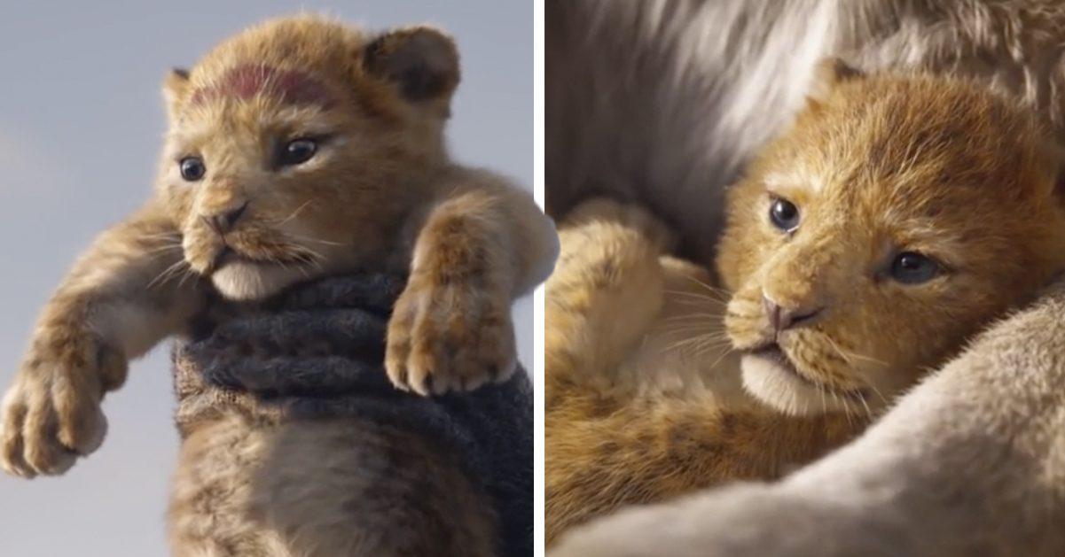 Disneys nya Lejonkungen trailer